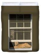 A Pet Cat Resting In A Screened Window Duvet Cover