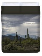 A Rainy Desert Afternoon  Duvet Cover
