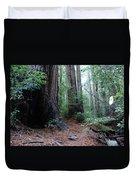 A Redwood Trail Duvet Cover