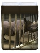A Rhino At The Sedgwick County Zoo Duvet Cover