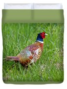 A Ring-necked Pheasant Walking In Tall Grass Duvet Cover