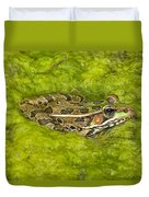 A Rio Grande Leopard Frog Sitting On A Duvet Cover