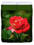 A Rose In Los Gatos Duvet Cover