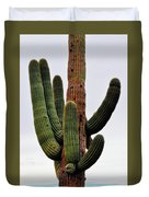 A Saguaro Afternoon Duvet Cover