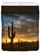 A Serene Sunset In The Sonoran Desert  Duvet Cover