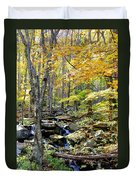 A Smokey Mountain Stream  Duvet Cover
