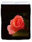 A Soft Rose  Duvet Cover
