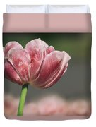 A Soft Tulip In Focus Duvet Cover