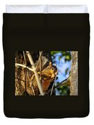 A Squirrel's Feist Duvet Cover