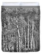 A Stand Of Aspen Trees In Black And White Duvet Cover