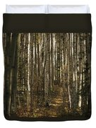 A Stand Of Birch Trees Show Duvet Cover