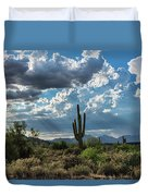 A Summer Day In The Sonoran  Duvet Cover