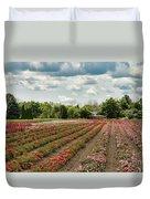 A Summer Dream Of Roses Duvet Cover