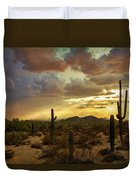 A Summer Evening In The Sonoran  Duvet Cover