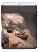 A Tiger Rattlesnake At The Henry Doorly Duvet Cover