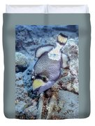 A Titan Triggerfish Faces Duvet Cover