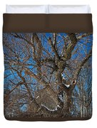 A Tree In Winter- Horizontal Duvet Cover