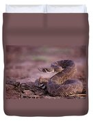 A Western Diamondback Rattlesnake Duvet Cover