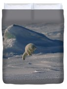 A White Arctic Fox, Alopex Lagopus Duvet Cover