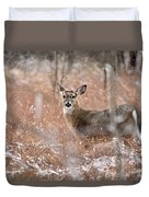 A White-tailed Deer In The Snow Duvet Cover