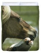 A Wild Pony Foal Nuzzling Its Mother Duvet Cover