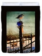 A Winter Sea Gull Portland Maine Duvet Cover