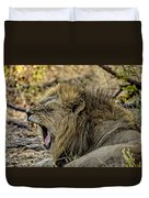 A Yawning Lion Duvet Cover