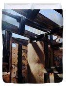 Abandoned House 1 Duvet Cover