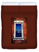 Abandoned House Window With Vines Duvet Cover