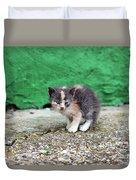 Abandoned Kitten On The Street Duvet Cover
