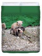 Abandoned Kittens On The Street Duvet Cover