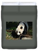 Absolutely Beautiful Giant Panda Bear With A Sweet Face Duvet Cover