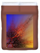 Abstract 112810a Duvet Cover