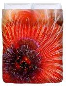 Abstract Poppy Duvet Cover