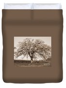 Acacia Tree In Sepia Duvet Cover