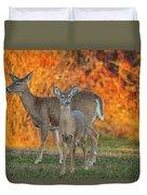 Acadia Deer Duvet Cover