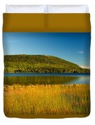 Acadia, National Park Shoreline And Marsh Maine Duvet Cover