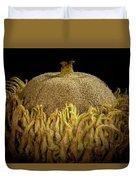 Acorn Emerging Duvet Cover
