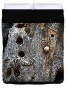 Acorn Woodpecker Cache, Sequoia National Park, Ca  September 2016 Duvet Cover