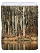 Across Skymount Pond - Autumn Browns Duvet Cover