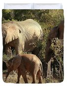 Addo Elephant Family Duvet Cover