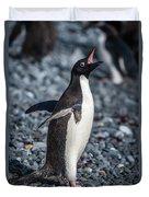 Adelie Penguin Squawking On Grey Shingle Beach Duvet Cover