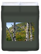 Adirondack Mountains New York Duvet Cover