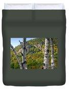 Adirondack Mountains New York Duvet Cover