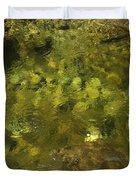 Adirondack Water Duvet Cover