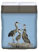 Adolescent Great Blue Herons Duvet Cover