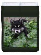 Adorable Alusky Puppy Hiding In A Garden Duvet Cover
