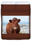 Adorable Brown Cow Standing On The Burren Duvet Cover