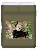 Adorable Giant Panda Bear Eating Bamboo Shoots Duvet Cover