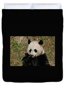 Adorable Giant Panda Eating A Green Shoot Of Bamboo Duvet Cover